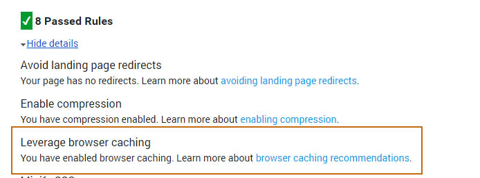 Google Page Speed Leverage Browser Caching Passed